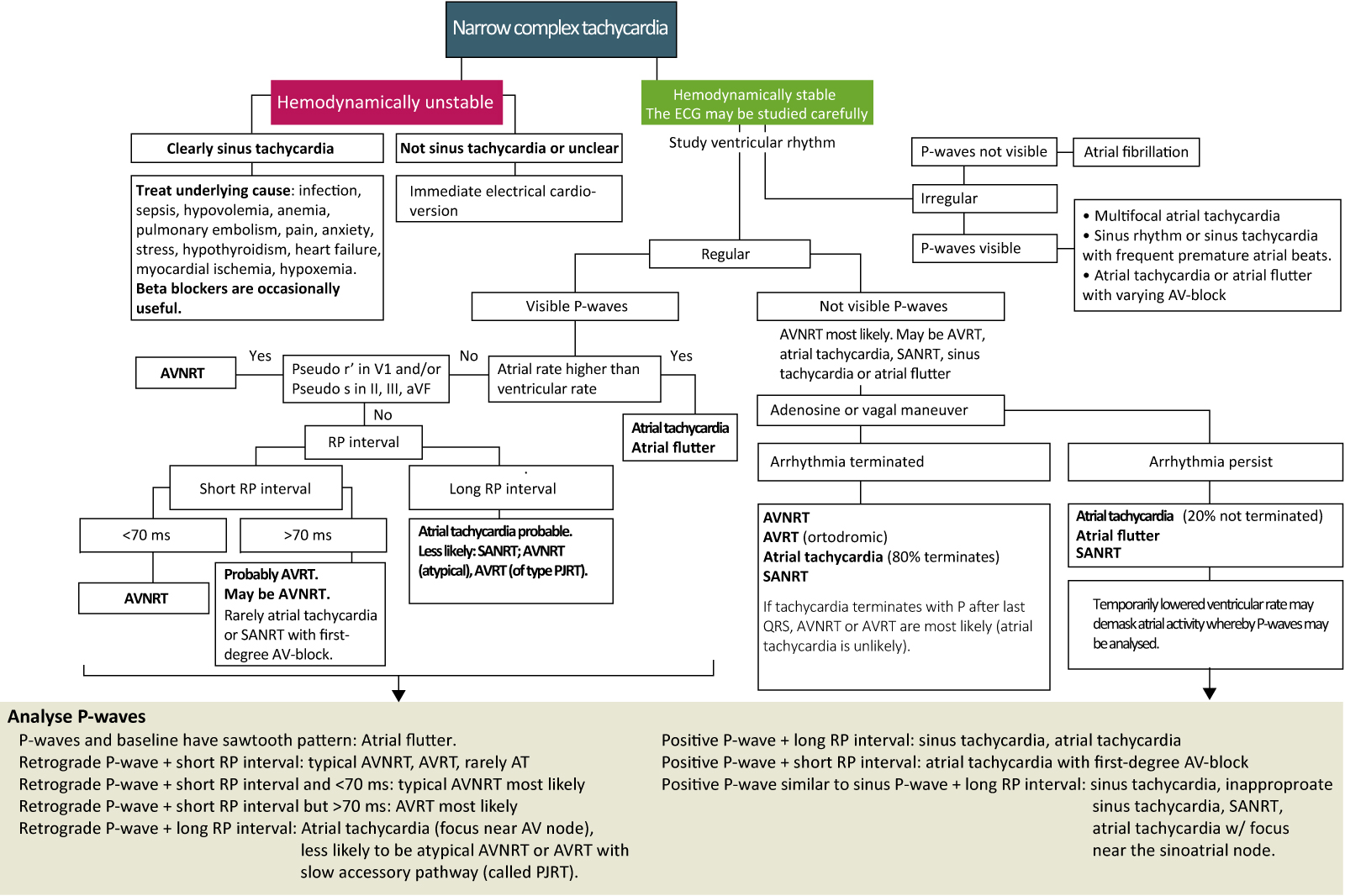 Figure 4. Management and diagnosis of narrow complex tachycardia.