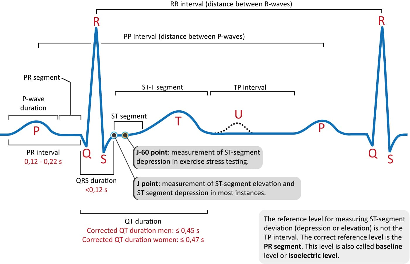 Figure 1. The classical ECG curve with its most common waveforms. Important intervals and points of measurement are depicted. ECG interpretation requires knowledge of these waves and intervals.